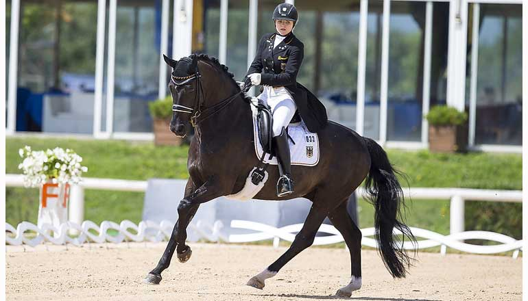 Fei European Championships For Young Riders Amp Juniors Fei