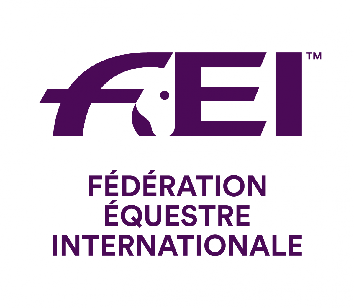 Image result for fei logo