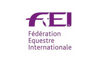 Image result for fei equestre