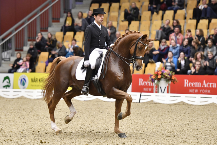 The sensational Spanish partnership of Severo Jesus Jurado Lopez and the 10-year-old gelding Lorenzo were convincing winners of today's first leg of the FEI World Cup™ Dressage 2016/2017 Western European League at Odense in Denmark. (Annette Boe Ostergaard/FEI)