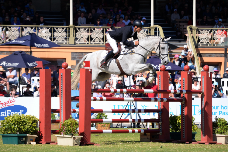 Shane Rose (AUS) created history today by taking first and second places at the Adelaide International 3 Day Event, second leg of the FEI Classics™ 2015/2016, with CP Quaified (pictured) and Virgil. (FEI/Julie Wilson)