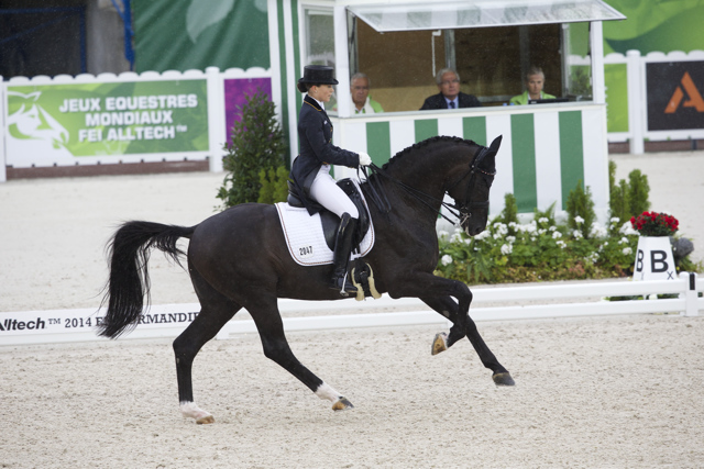 Germany's Kristina Sprehe and Desperados FRH finished at the top of the leaderboard after Day 1 of the Dressage Team Championship at the Alltech FEI World Equestrian Games™ 2014 at Stade D'Ornano in Caen, France. (Dirk Caremans/FEI)